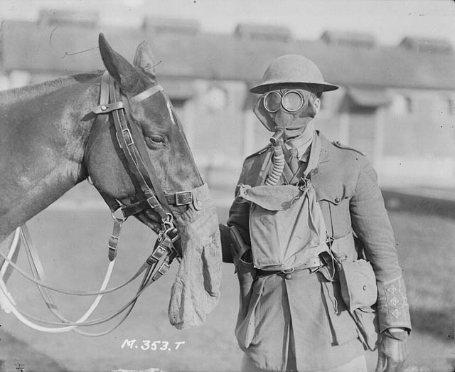 Horse and soldier wearing gas masks.