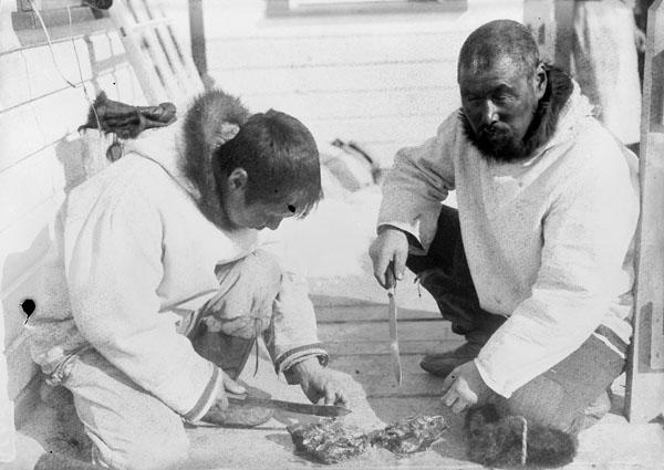 (Hudson Strait Expedition). Eskimoes eating raw seal meat, Port Burwell, Quebec [Nunavut], 22 April 1928.