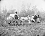 Black and white photograph of a clearing with a white tent, an ox-drawn wooden cart, and several people looking on