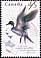 Canada, 45¢ Northern pintail, 15 August 1995