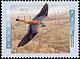 Canada, 45¢ American kestral, 9 January 1996