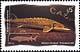 Canada, 45¢ Atlantic sturgeon, 30 May 1997