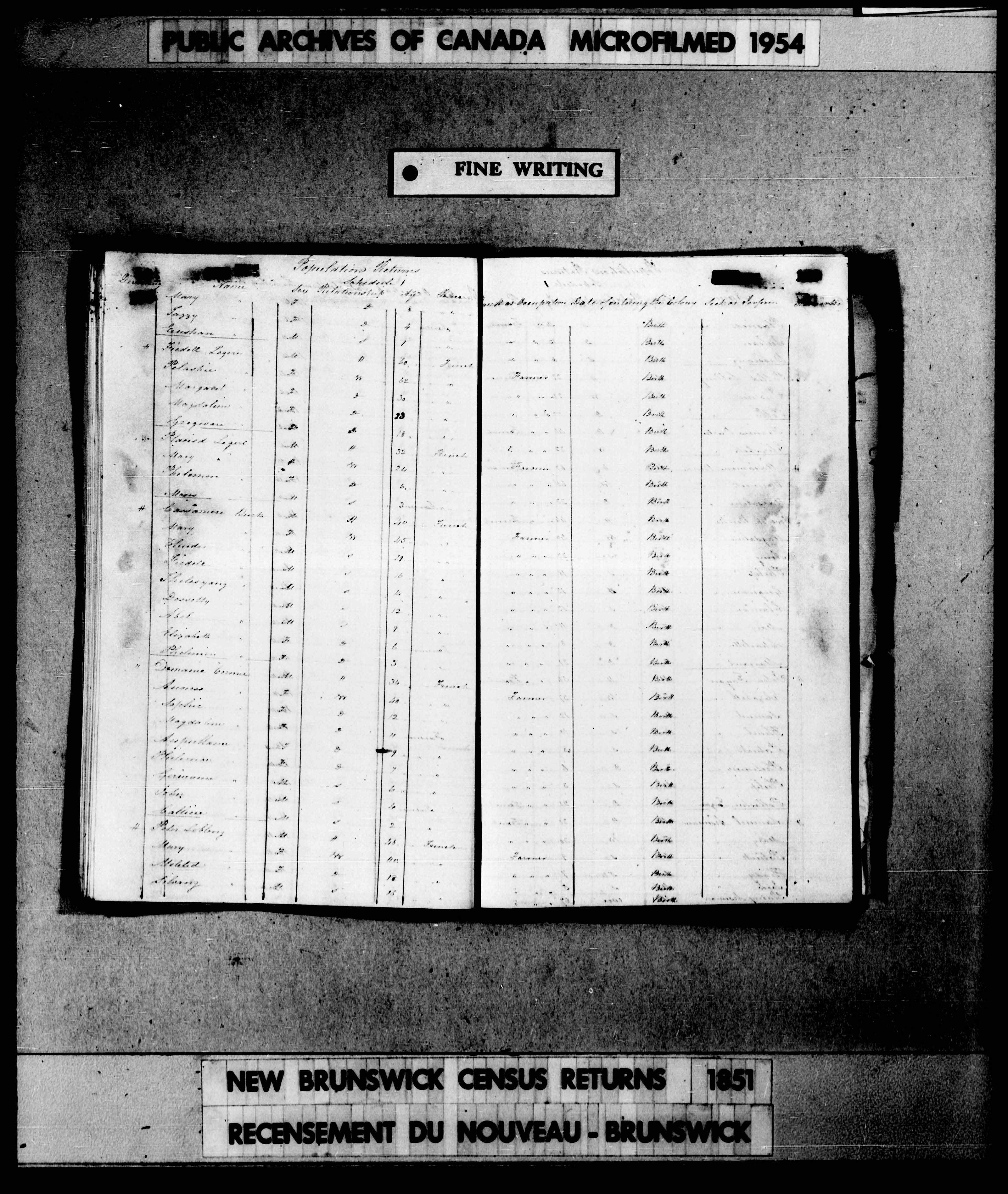 Page numérisée du Recensement de 1851 (Canada-Est, Canada-Ouest, Nouveau-Brunswick et Nouvelle-Écosse), Page numéro , pour Placied Legere