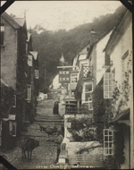 Photograph of a man and two donkeys on a steep and narrow street in Clovelly, England, unknown date