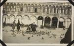 Photograph of an unidentified nursing sister feeding pigeons in St. Mark's Square, Venice, Italy, March 24-26, 1919