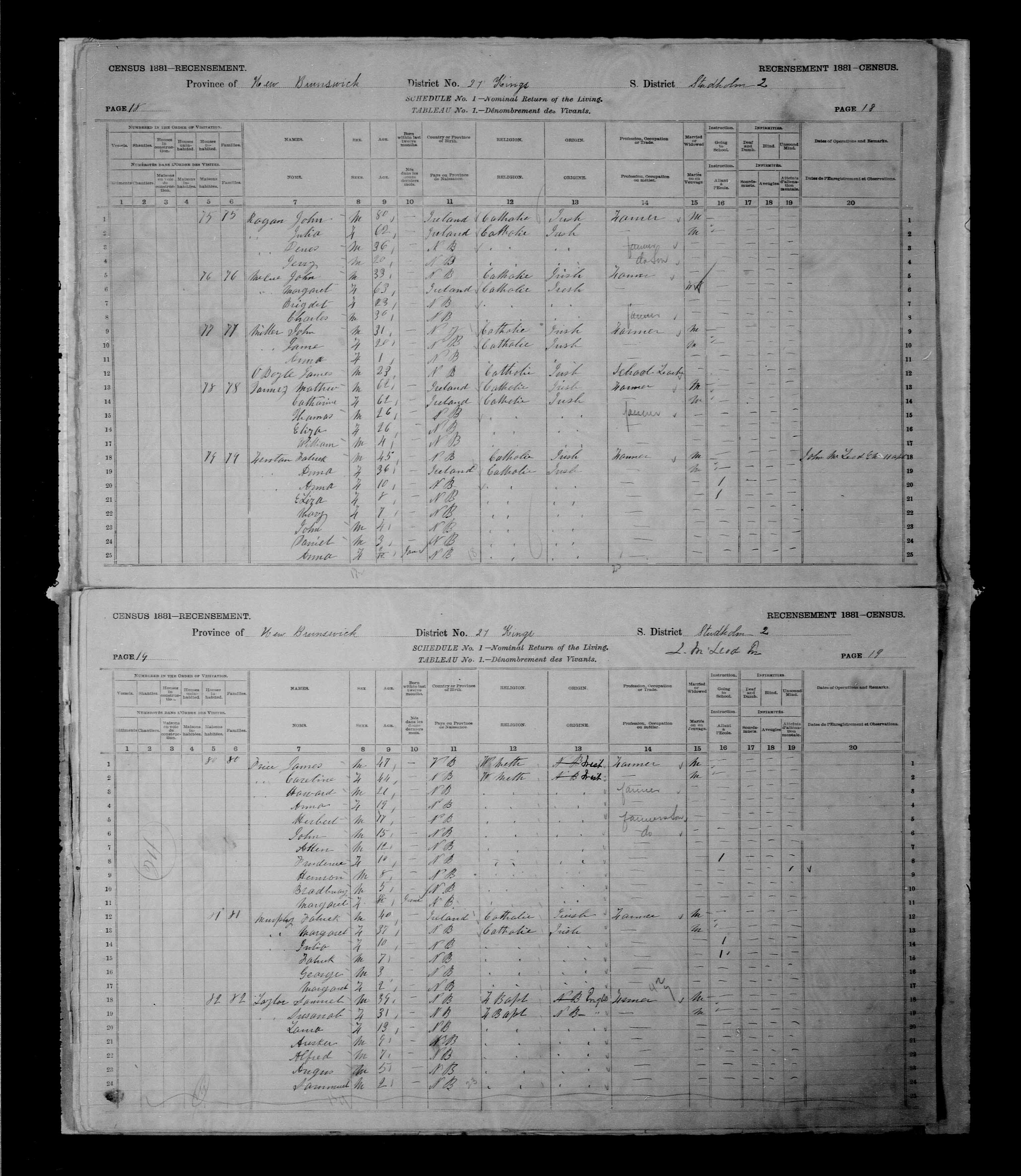Digitized page of Census of Canada, 1881 for e008131265