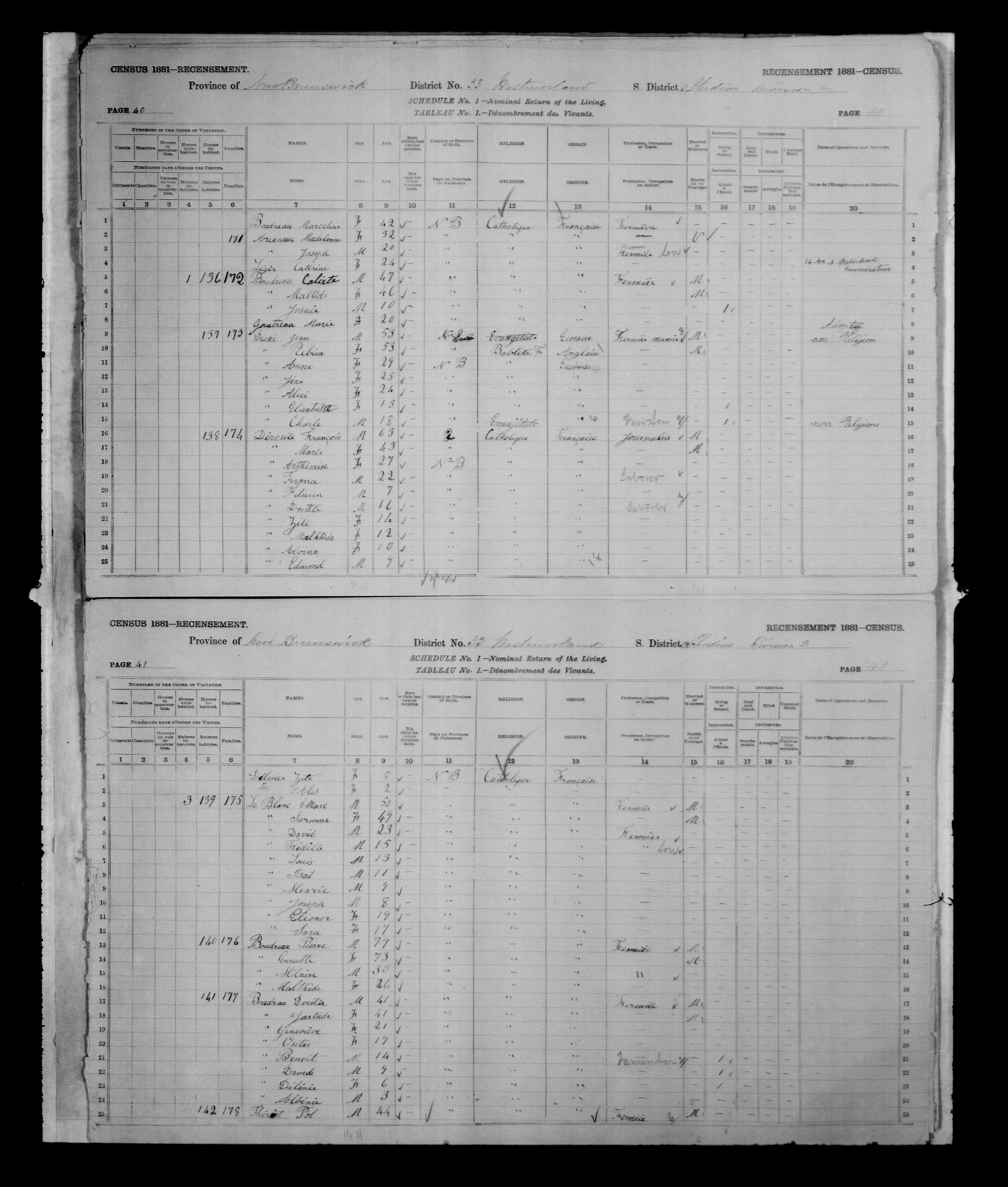 Digitized page of Census of Canada, 1881, Page number 41, for Pol THERIOT