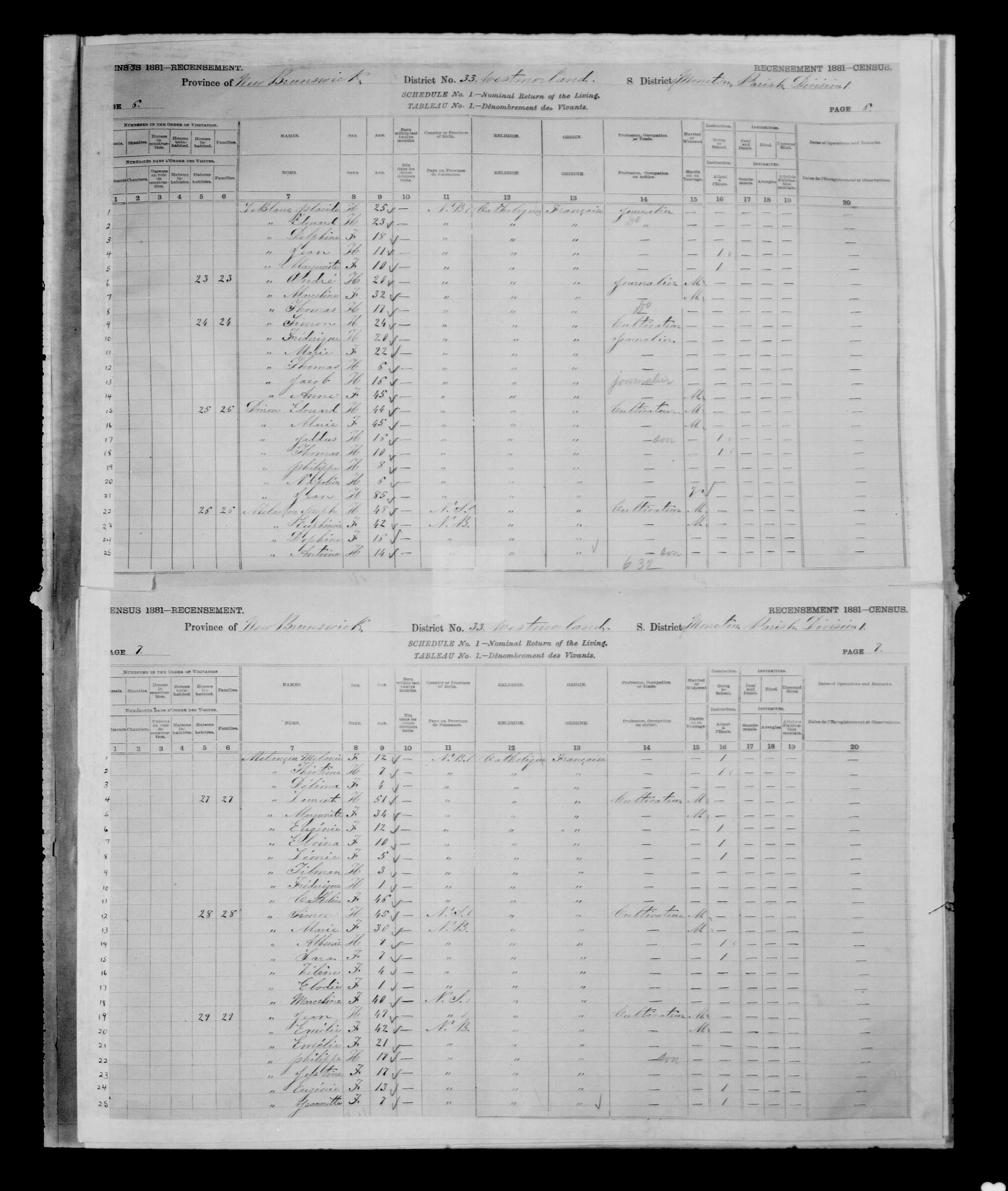 Digitized page of Census of Canada, 1881 for e008134145