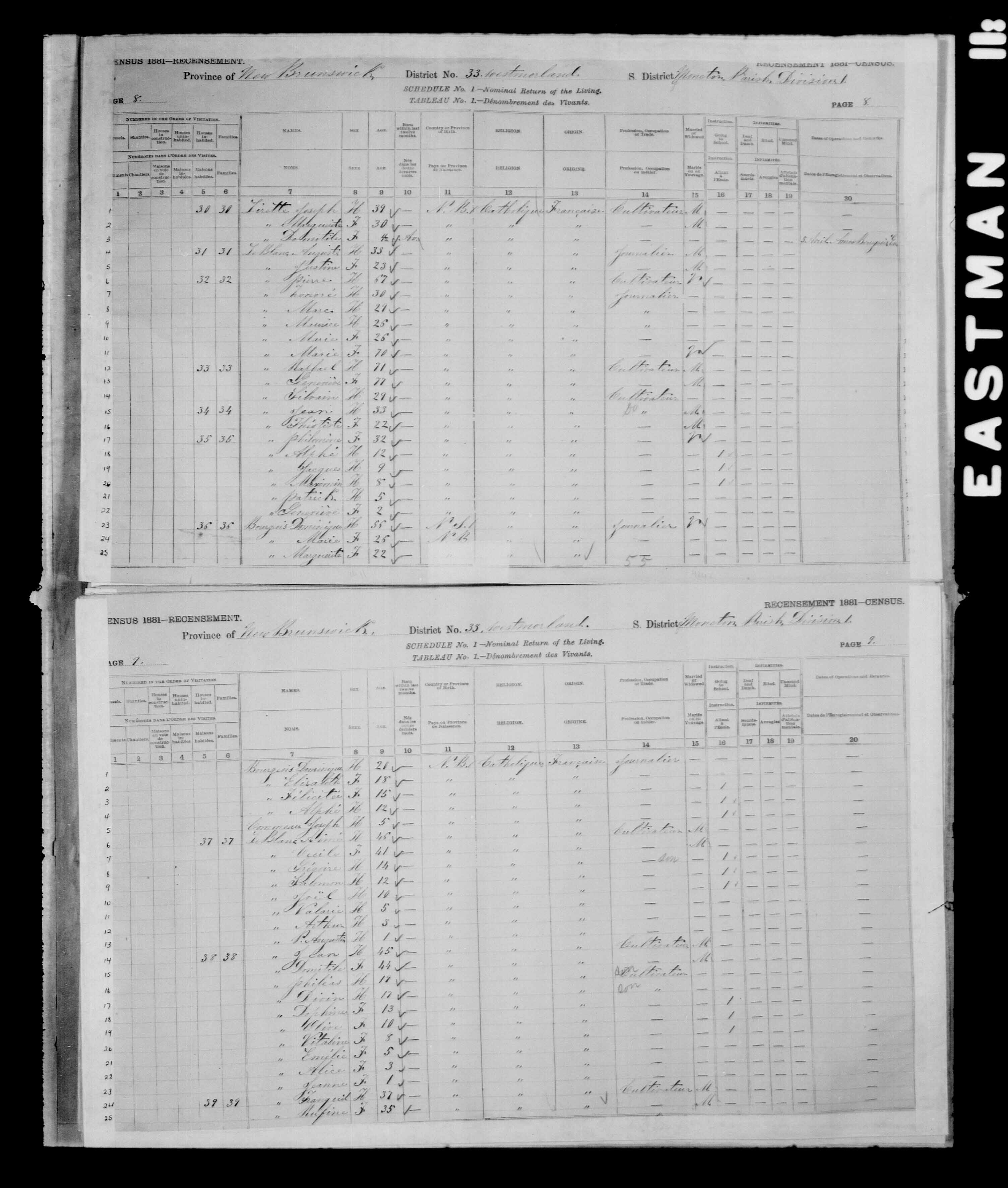 Digitized page of Census of Canada, 1881 for e008134146