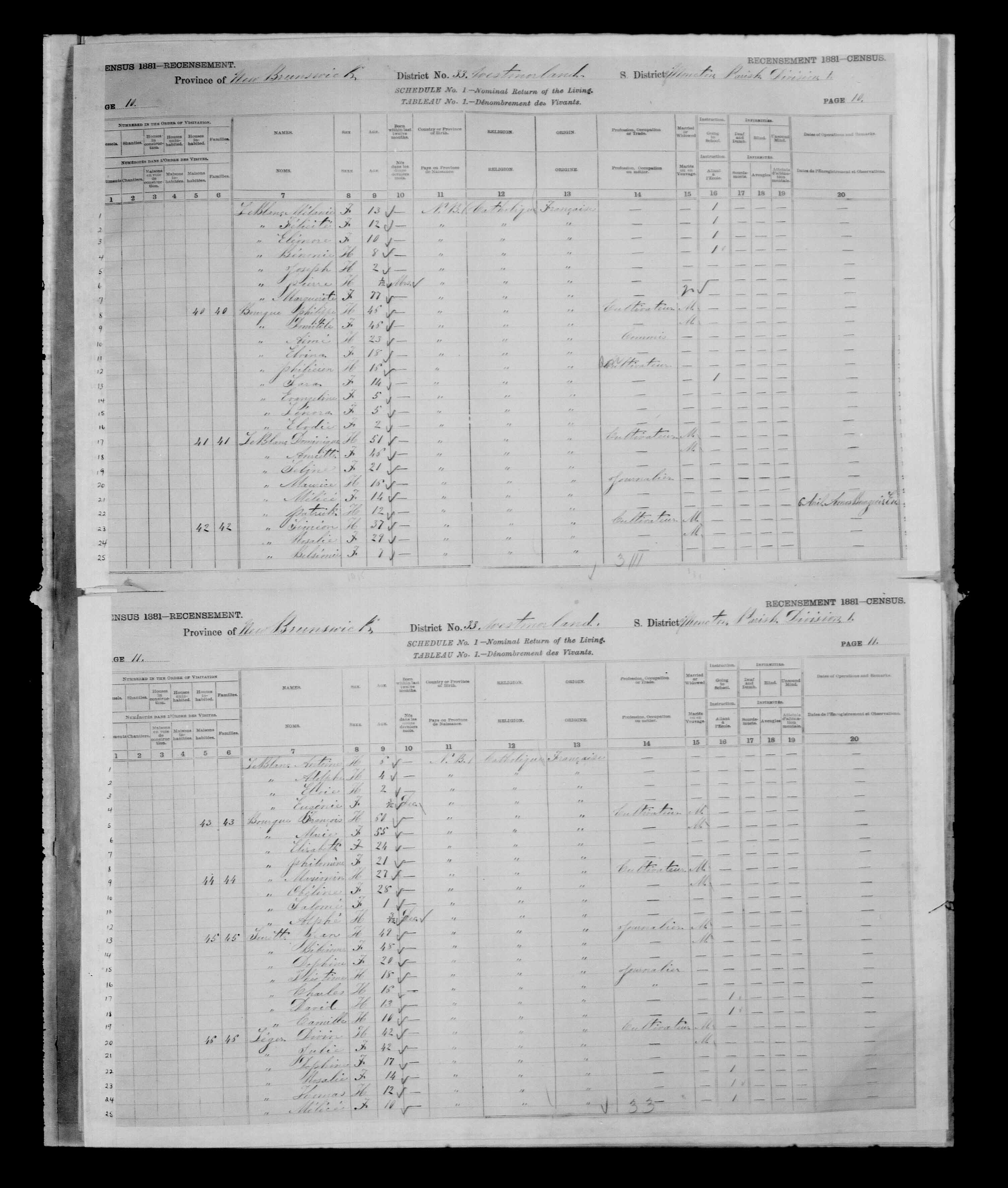 Digitized page of Census of Canada, 1881 for e008134147