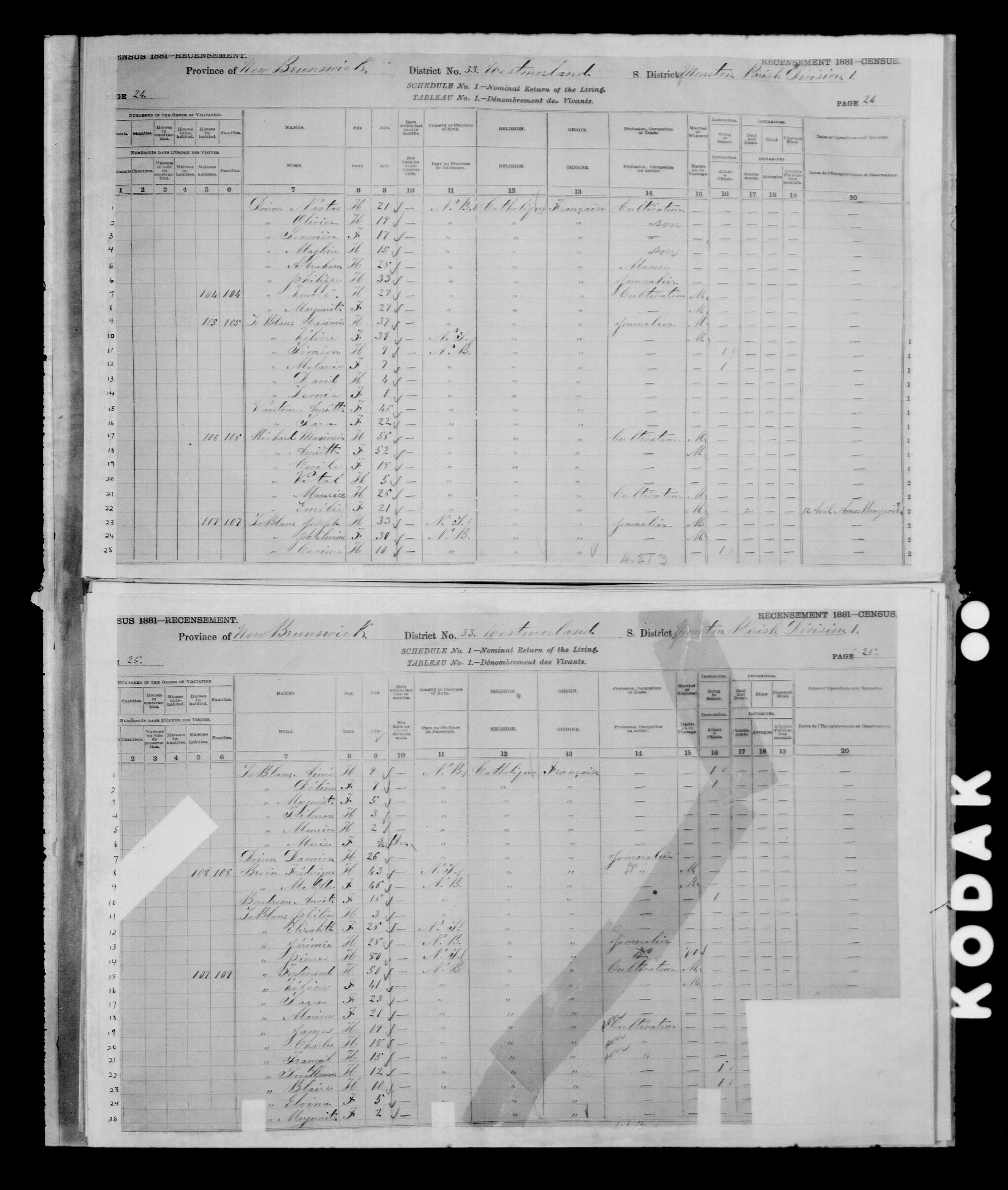 Digitized page of Census of Canada, 1881 for e008134154