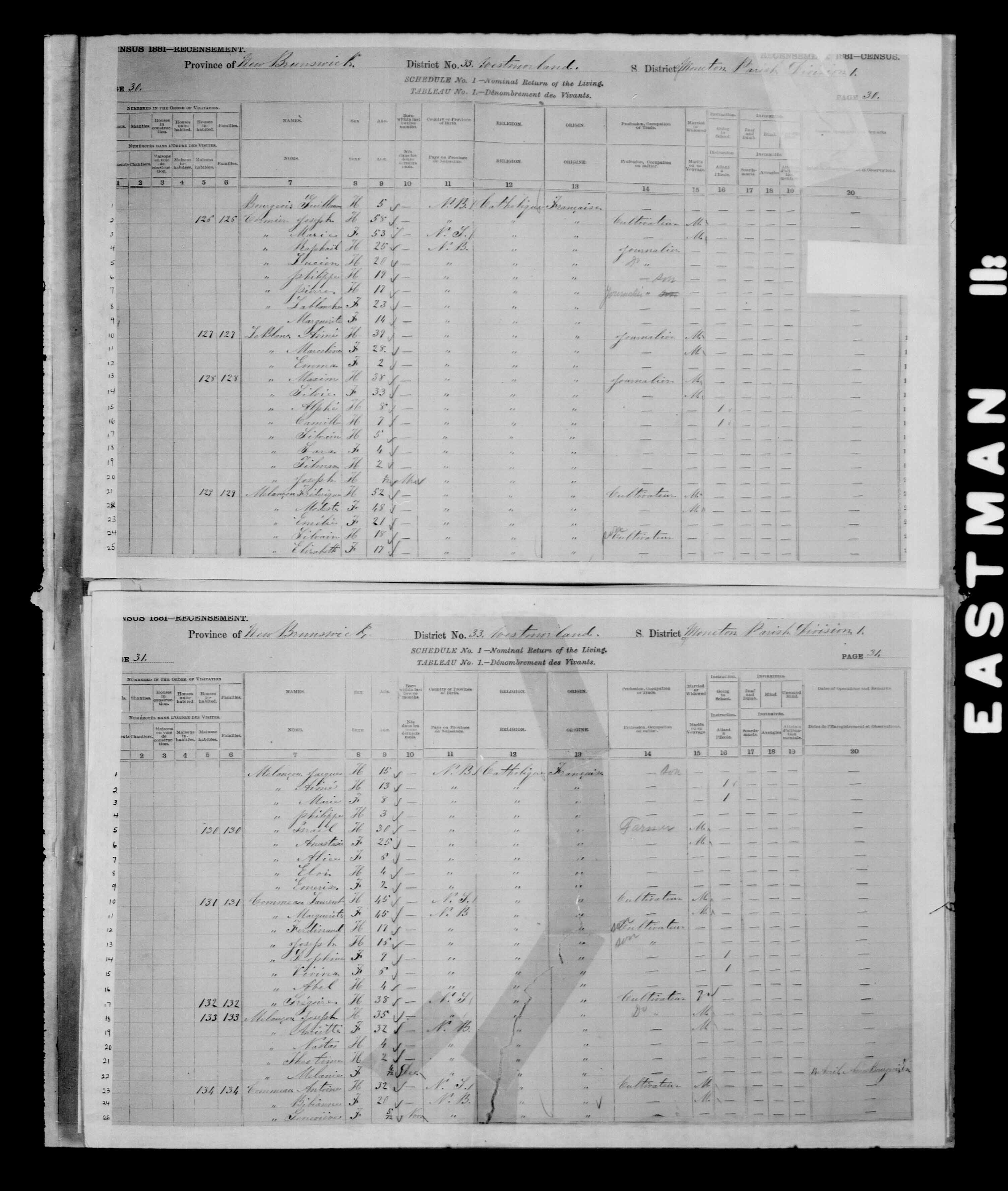 Digitized page of Census of Canada, 1881 for e008134157