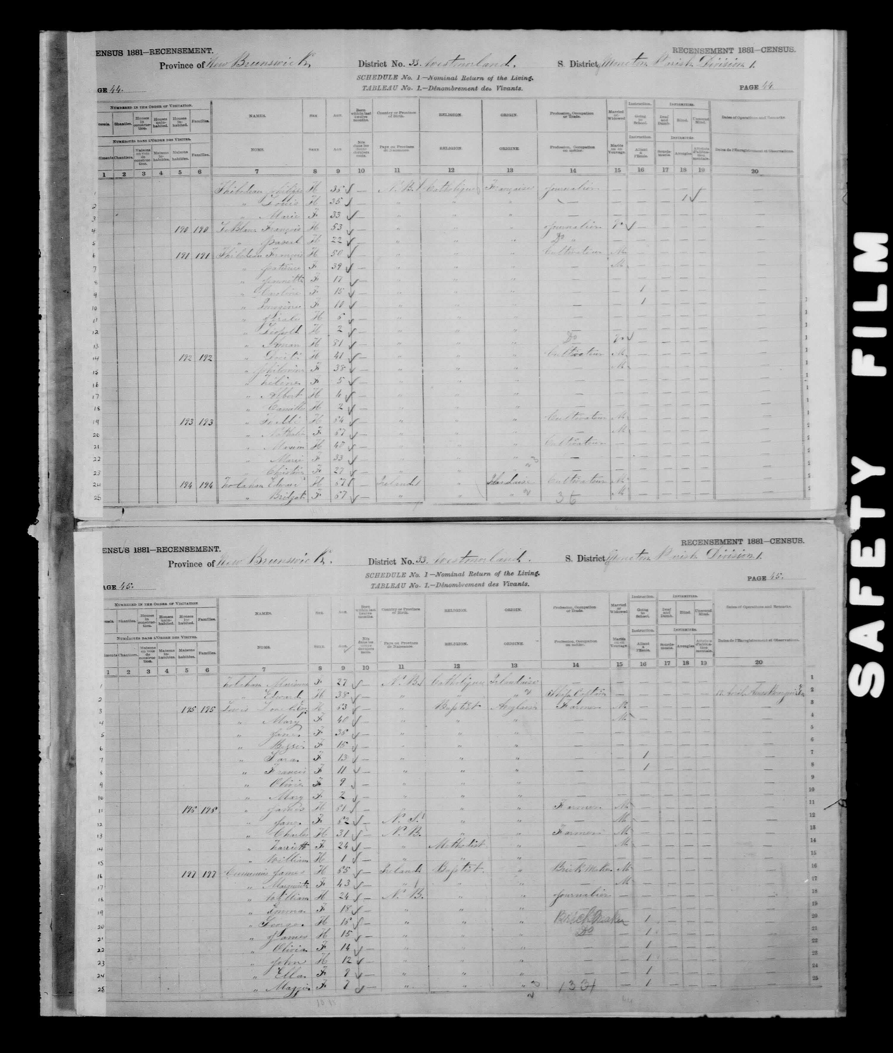 Digitized page of Census of Canada, 1881 for e008134164