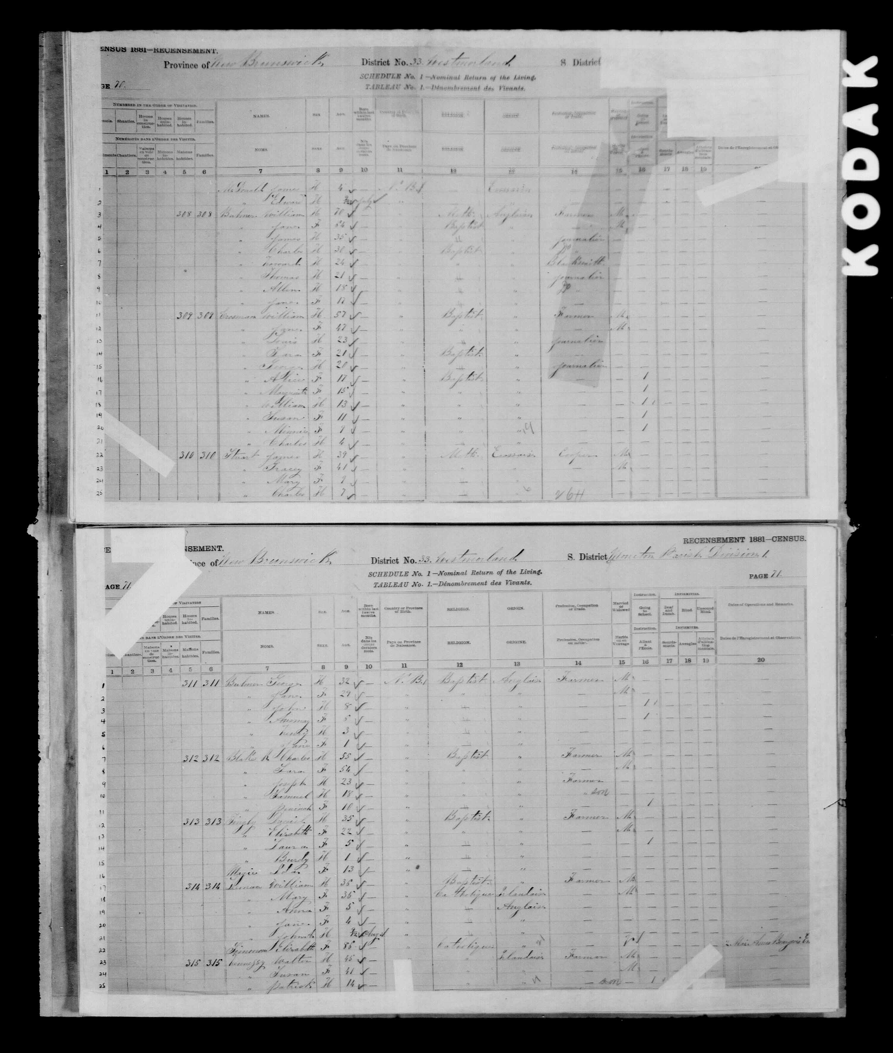 Digitized page of Census of Canada, 1881 for e008134177
