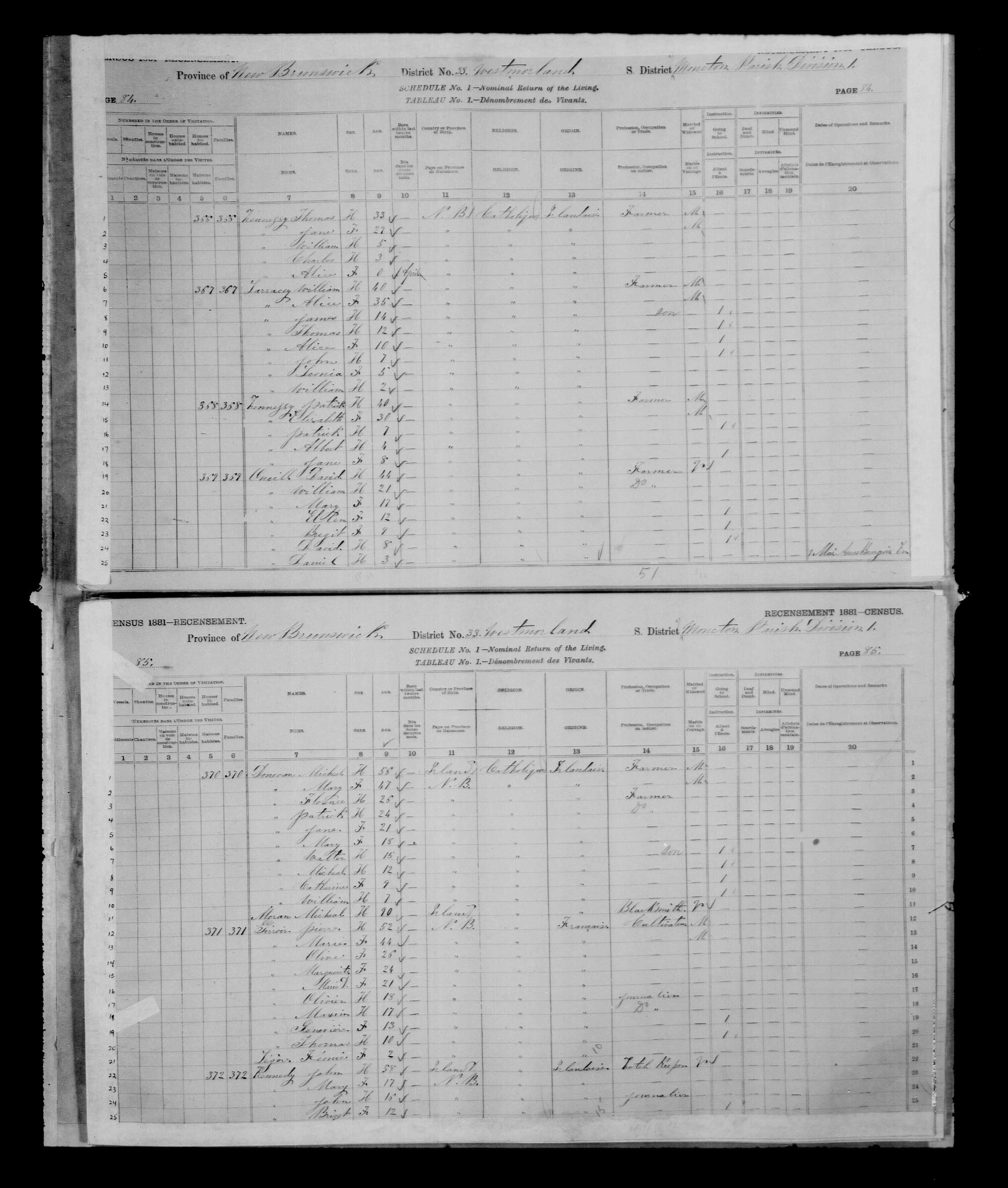 Digitized page of Census of Canada, 1881 for e008134184