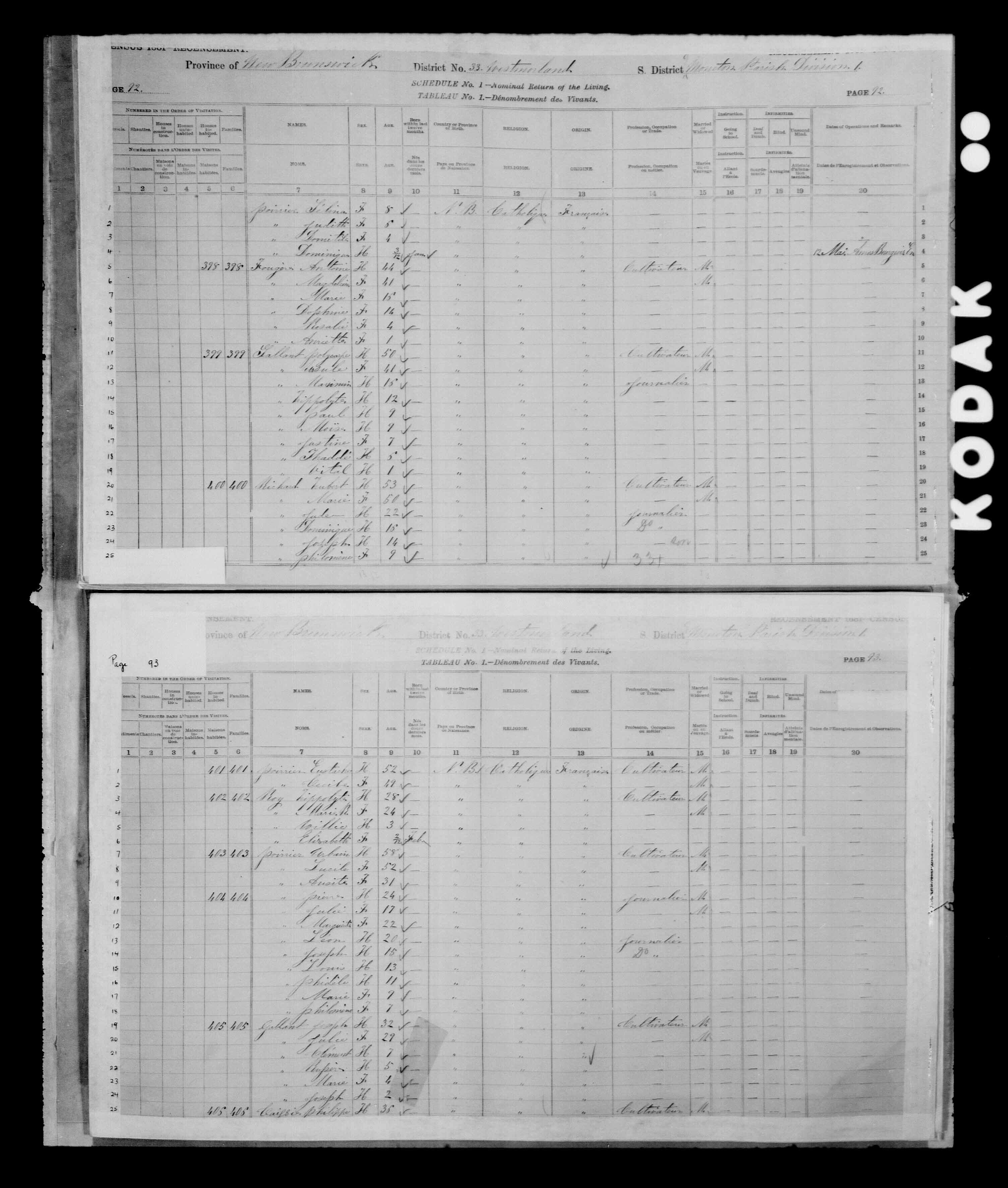 Digitized page of Census of Canada, 1881 for e008134188