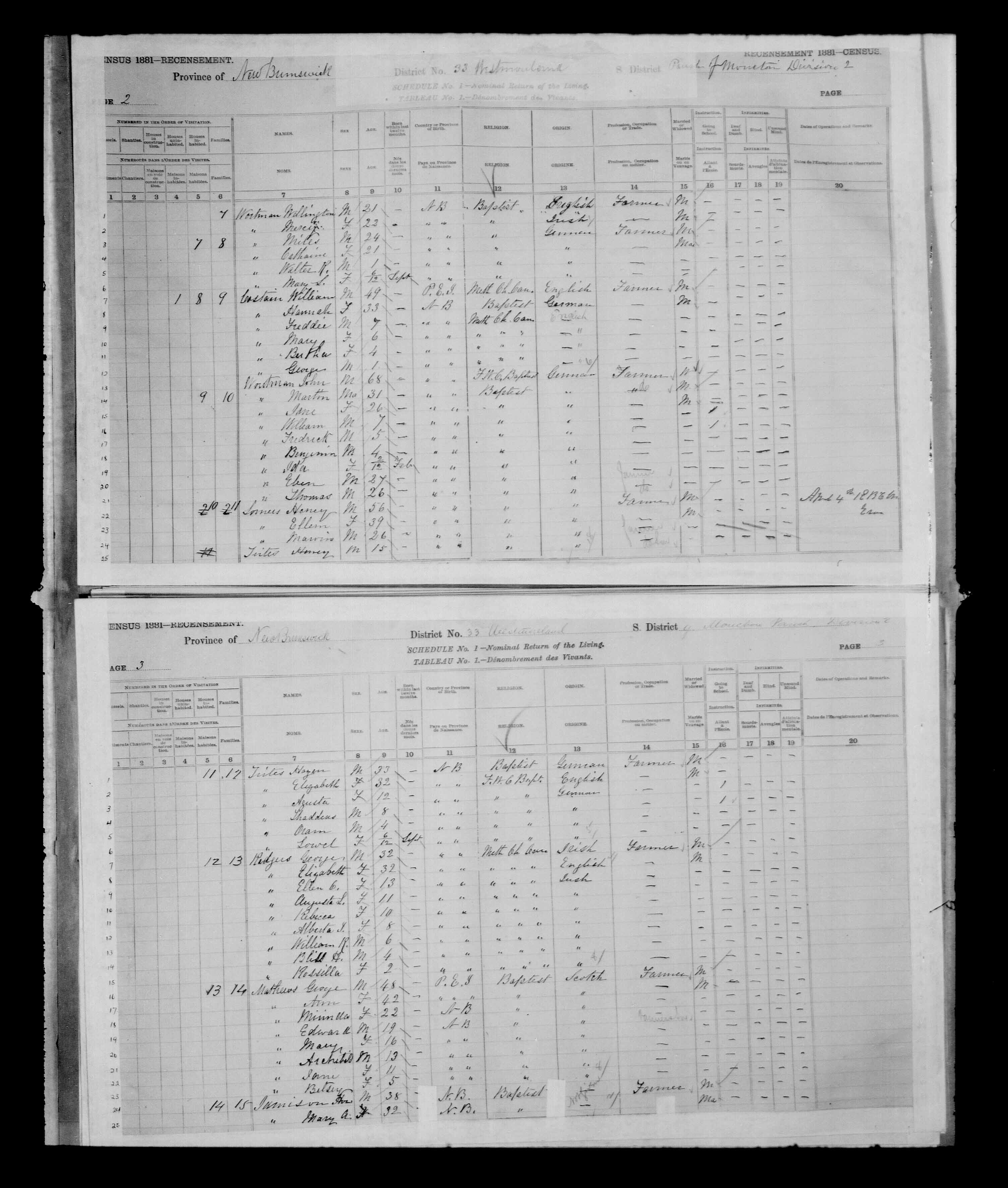 Digitized page of Census of Canada, 1881 for e008134196