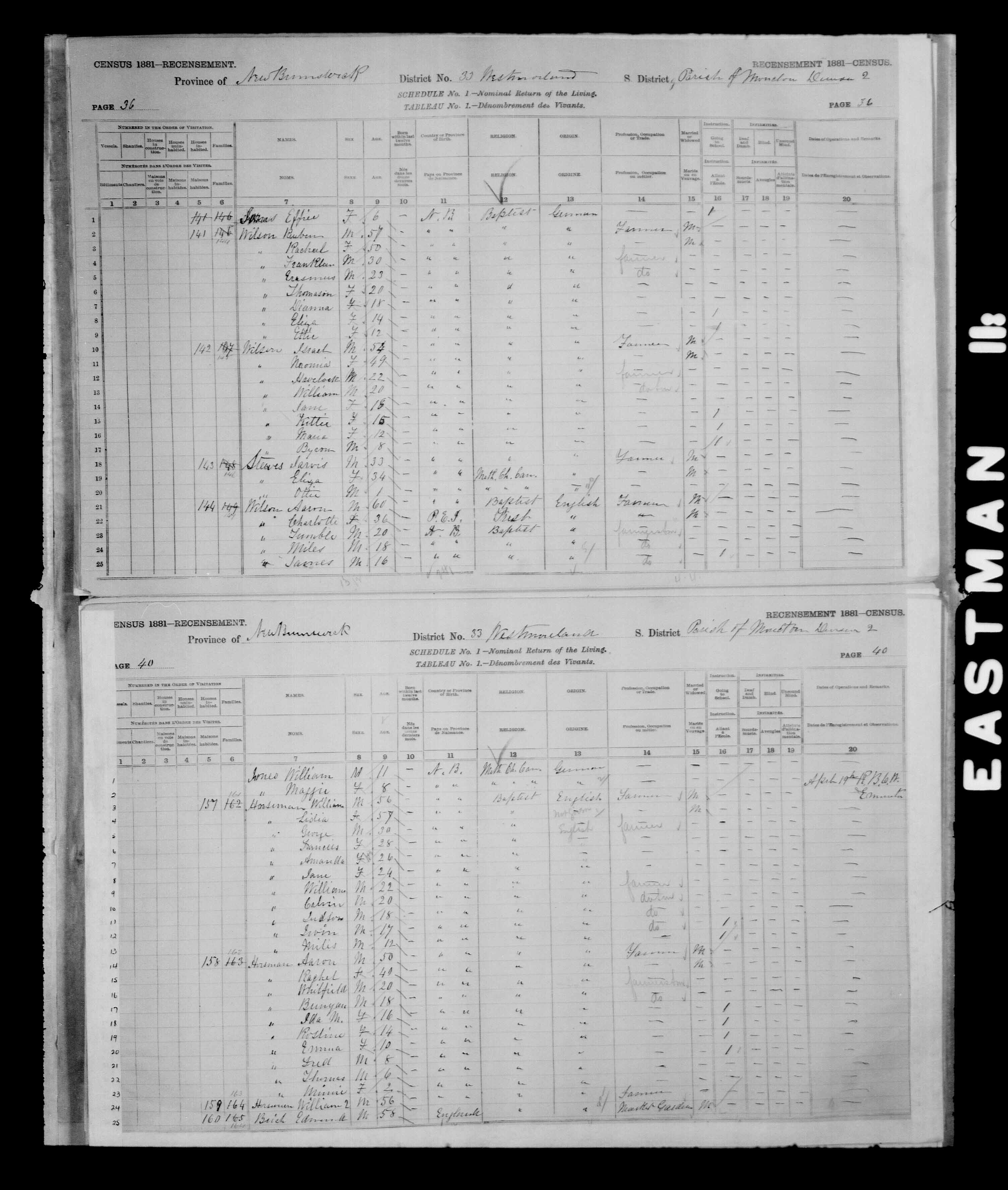 Digitized page of Census of Canada, 1881 for e008134213