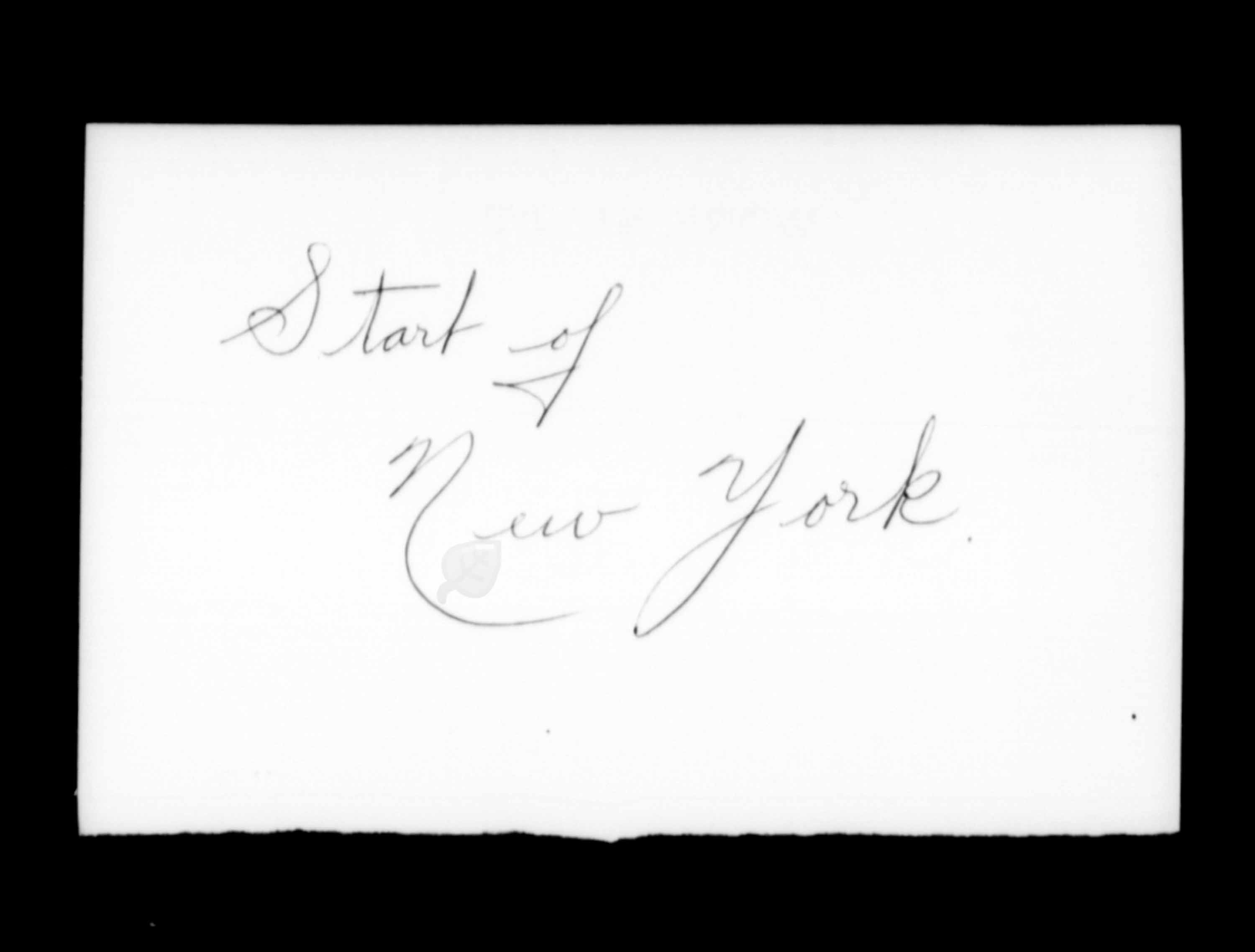Title: Passenger Lists: New York (1925-1935) - Mikan Number: 161343 - Microform: t-14923