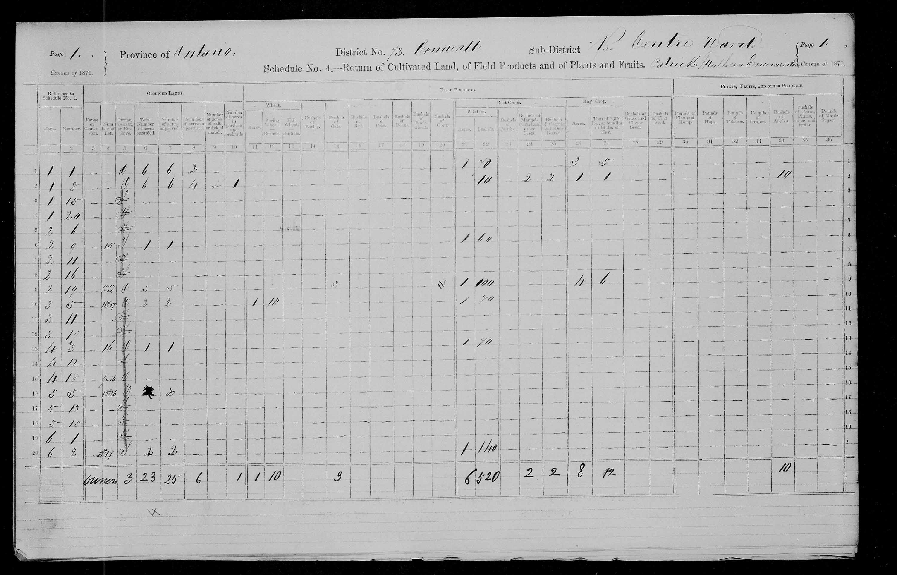 Title: Census of Canada, 1871 - Mikan Number: 142105 - Microform: c-10008